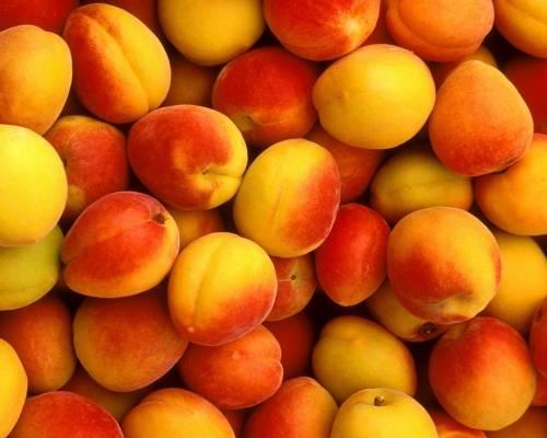 Красивые обои спелые персики скачать